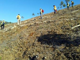 EL ARBOL ES VIDA celebra el Dia Forestal Mundial con la primera plantacion