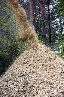 La biomasa progresa en Pontevedra