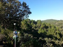 Los pequeños municipios de Castilla-La Mancha apuestan por la ordenacion de sus montes