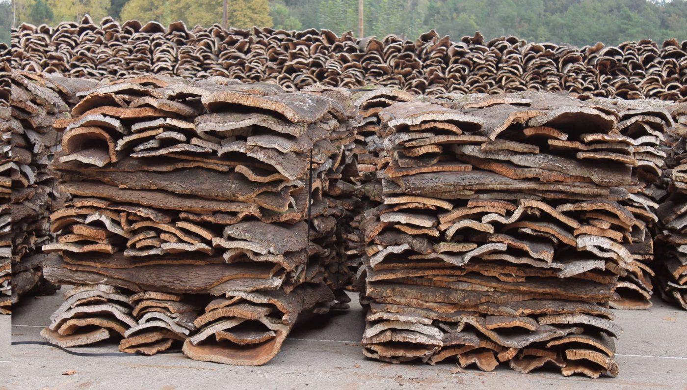 En España se extraen al año 88.400 toneladas de corcho