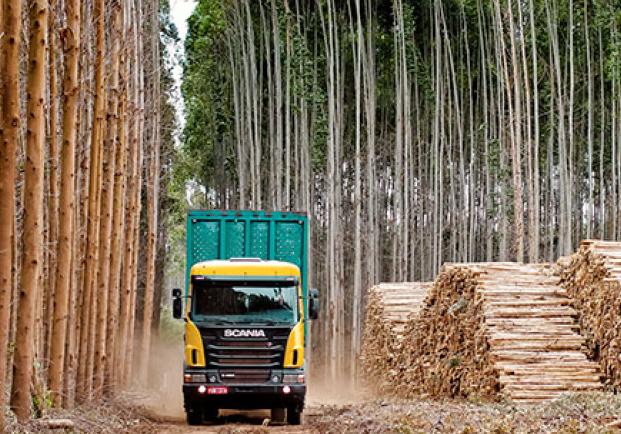 La industria de la madera solicita productos a través de MADEREA por más de seis millones de euros
