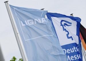 LIGNA_bandera