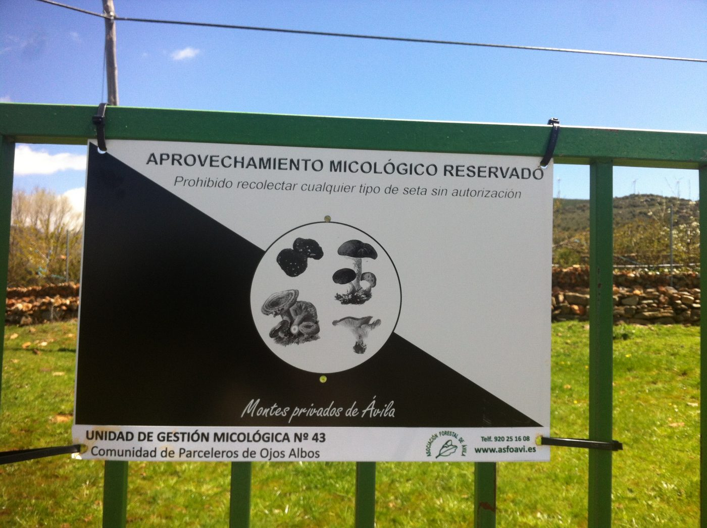 Presentado en Ojos Albos (Ávila) el proyecto MicoPlus