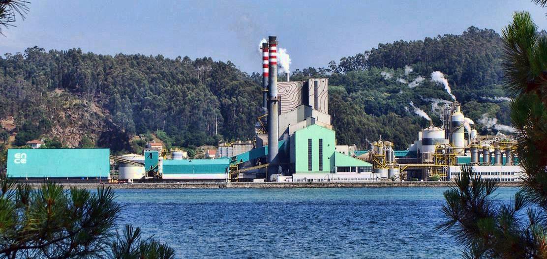 ENCE planea abrir un centro de investigación sobre la madera en Galicia