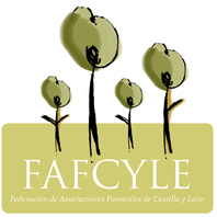 Fafcyle_logo