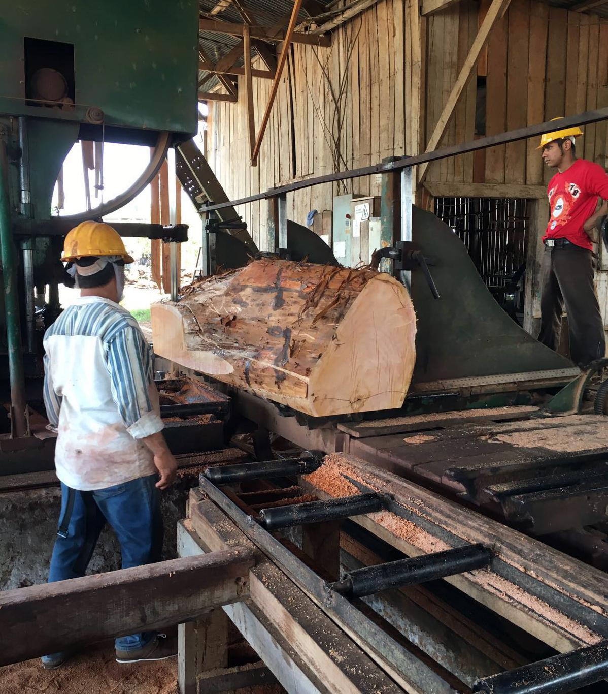 COPADE y LEROY MERLIN visitan a sus proveedores de madera en Guatemala