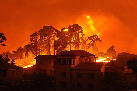 Ingenieros Forestales piden a las Comunidades Autónomas potenciar la investigación de causas de incendios forestales