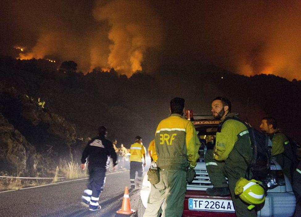 Ingenieros Forestales alertan del alto riesgo de grandes incendios