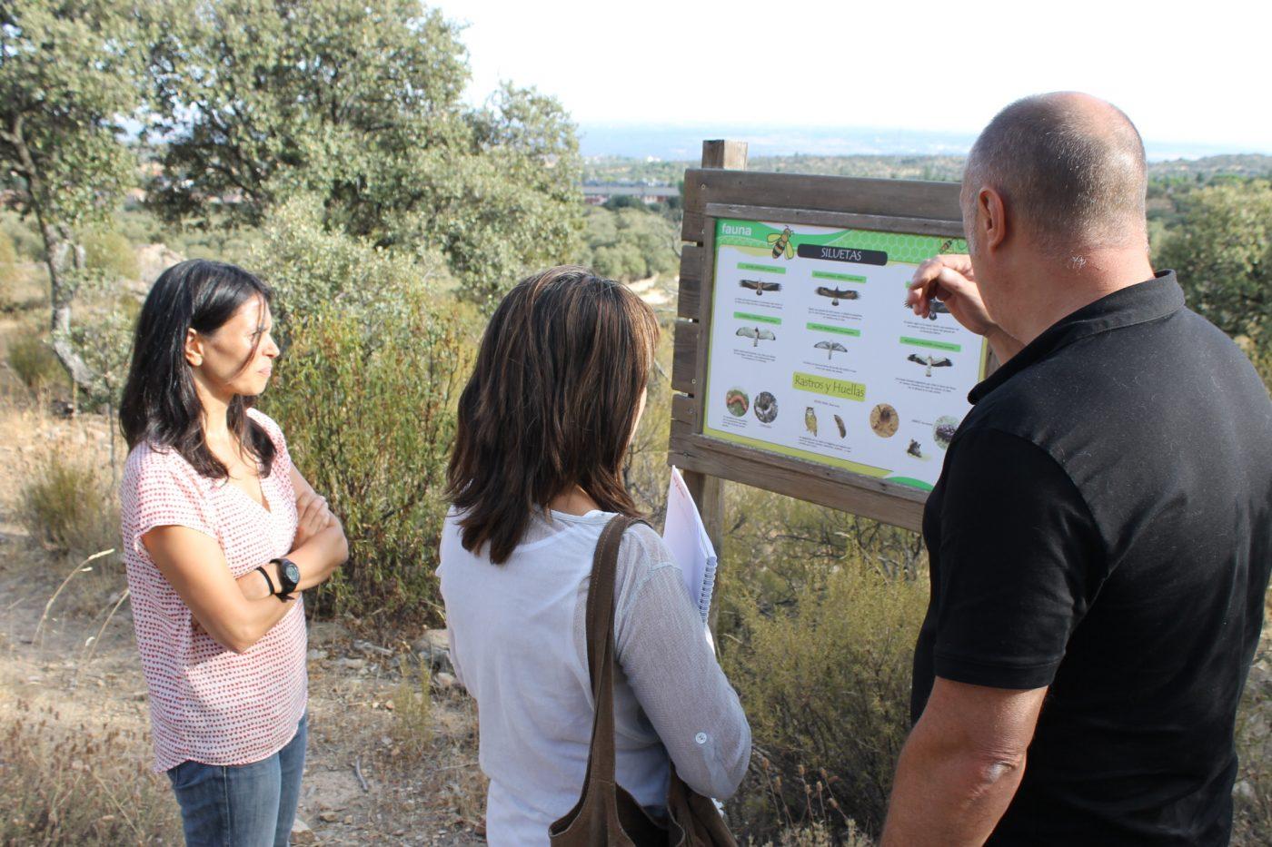 Gestión forestal y turismo