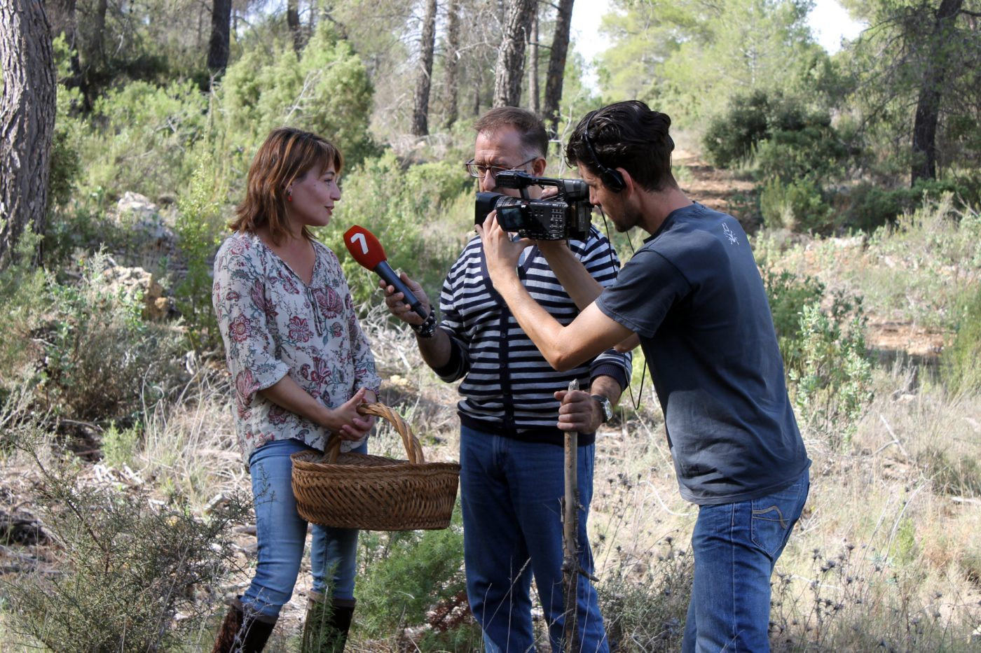Primera finca forestal privada con aprovechamiento micológico reservado en Murcia