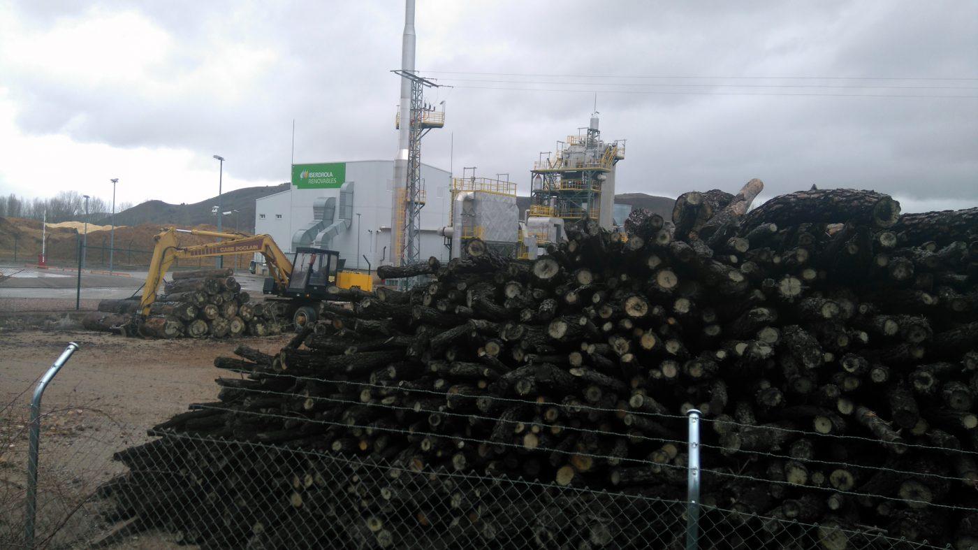 La biomasa, un negocio de 3.700 millones de euros en España, 0,34% del PIB