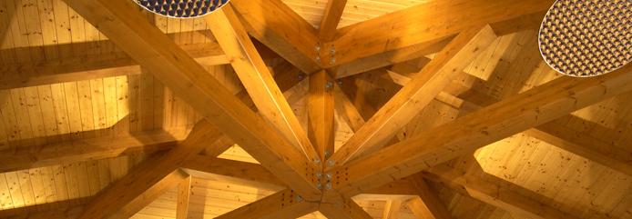 AITHON PV33: Barniz intumescente para la madera