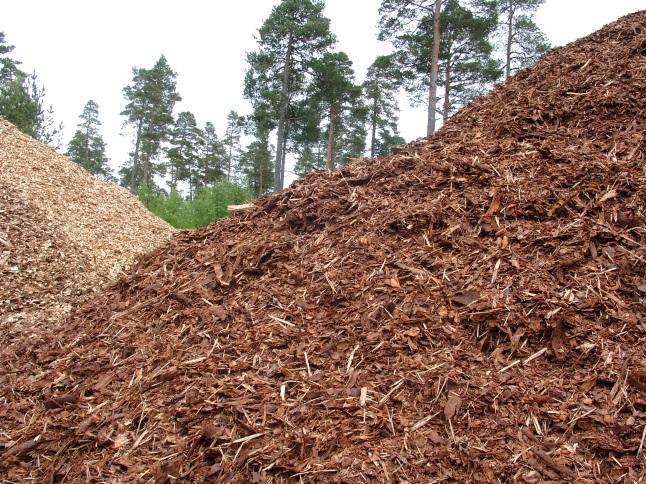 La biomasa puede atender toda la demanda energética de España hasta el 31 de diciembre
