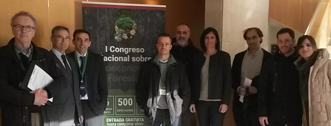 La bioeconomía forestal en Cantabria podría crear 2.000 puestos de trabajo