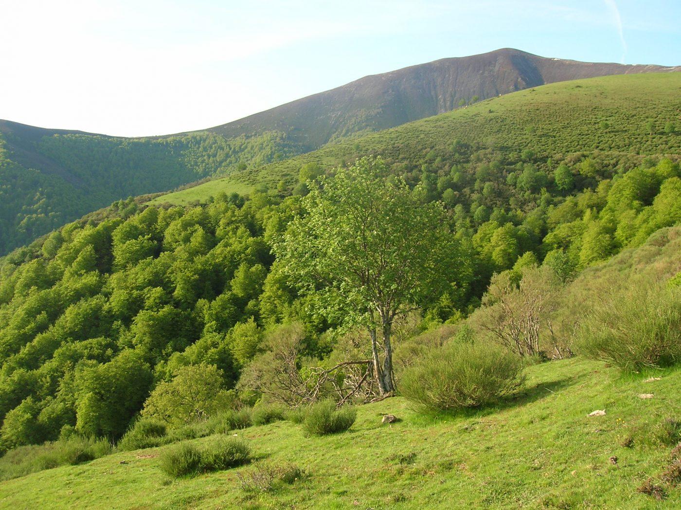 """""""La protección de la naturaleza es un bien público y no debe llevarse a cabo a expensas de los propietarios de los terrenos"""""""