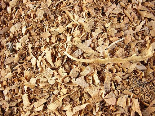 La biomasa de calefacción generó en Galicia 77 millones