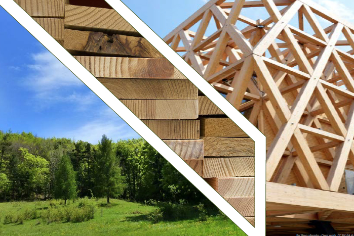 Jornada: Bosques, Madera y Arquitectura