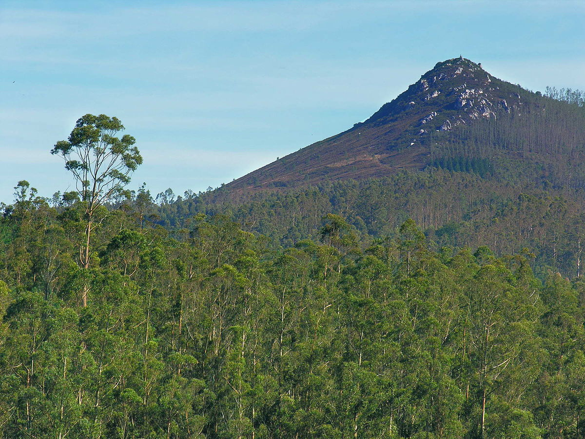 FSC participa en la inauguración del Monte Demostrativo de Pico Sacro