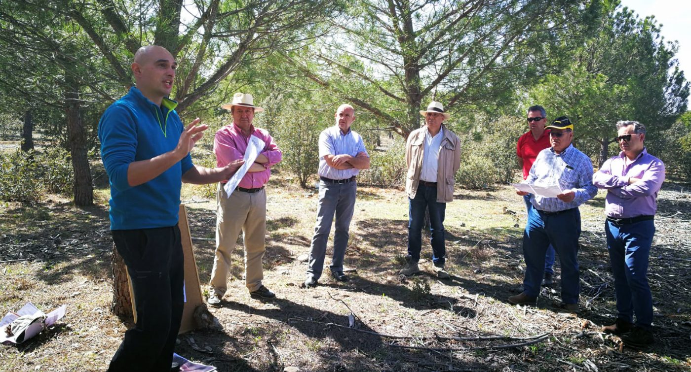ASFOVA orienta al selvicultor sobre la gestión de sus pinares