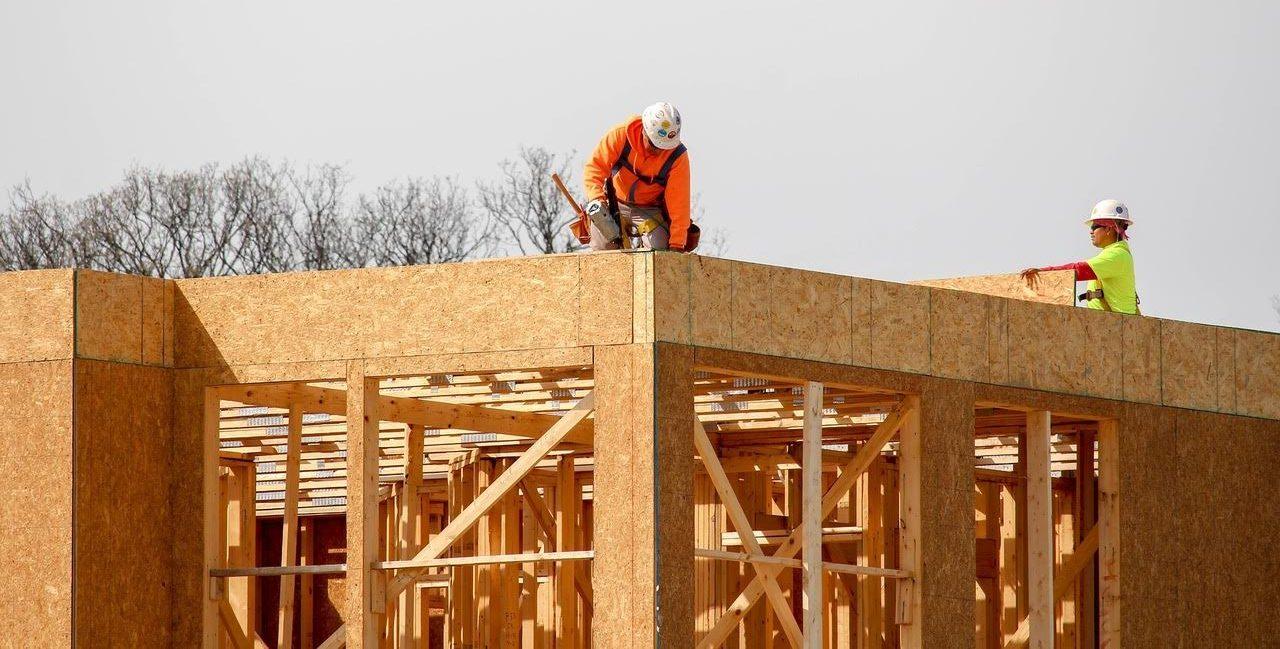 Un documental de FSC promueve el uso de la madera certificada en la construcción