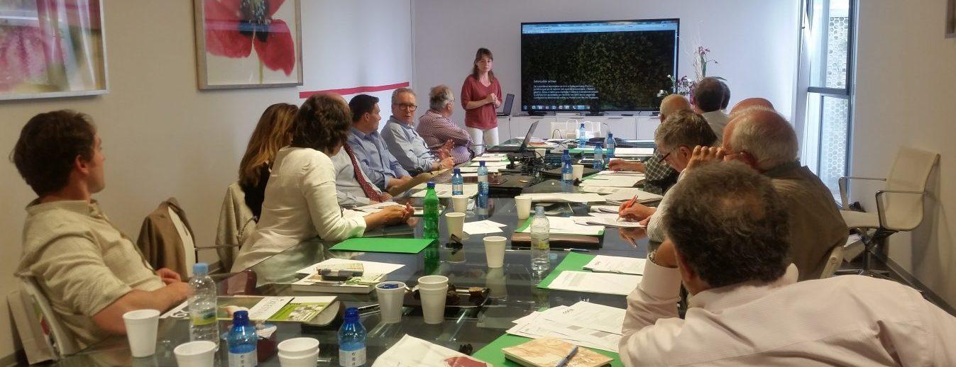La Asamblea de COSE considera prioritario que se apruebe una fiscalidad que incentive la gestión forestal sostenible