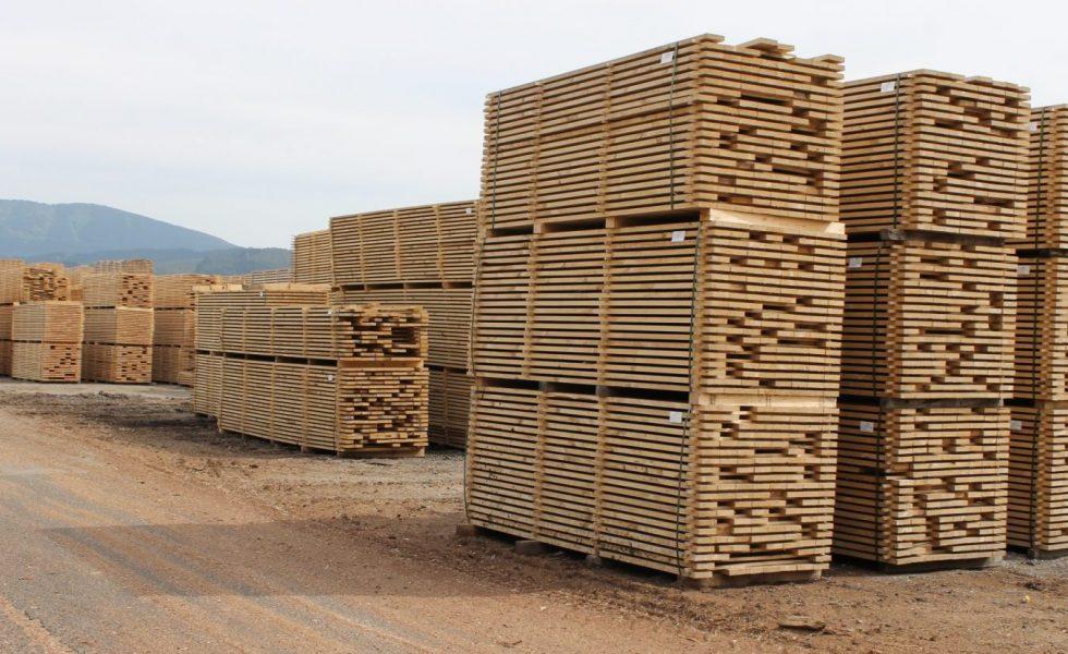 Las importaciones de madera y derivados crecieron un 4% en valor en el año 2019