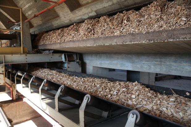 El 98% de la madera que consume la industria papelera española es de procedencia local