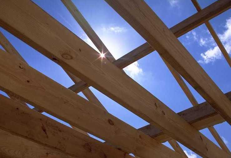 Los compradores de la UE están adquiriendo cada vez más madera de ...