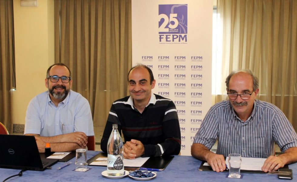 """La FEPM presenta su proyecto de Convención 2018 """"Pavimentos de Madera"""""""
