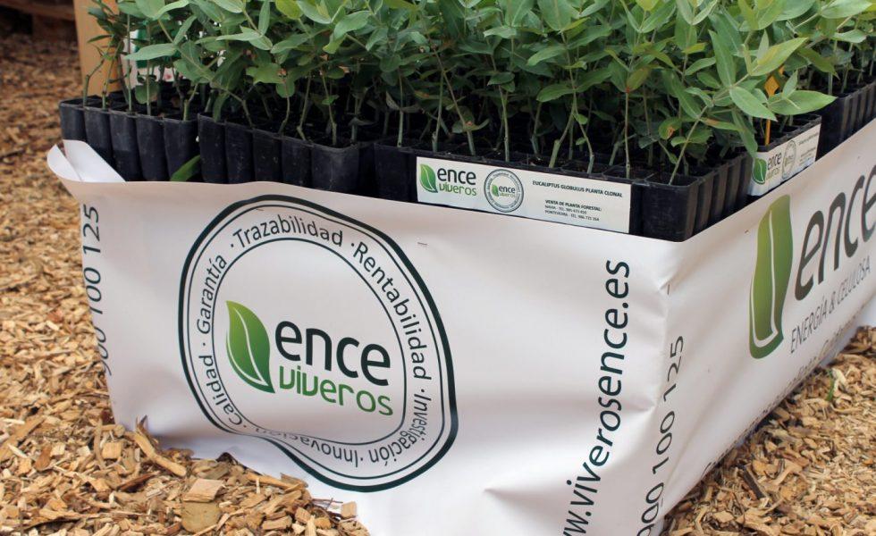 ENCE Viveros presenta su sello de calidad y nueva imagen corporativa