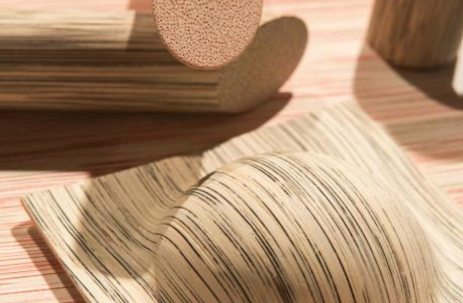 Una exposición pone de relieve el potencial de la madera como material del futuro