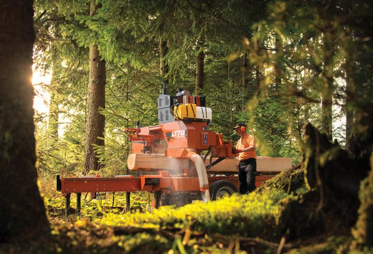 Mejores aserraderos para aumentar la sostenibilidad de los bosques
