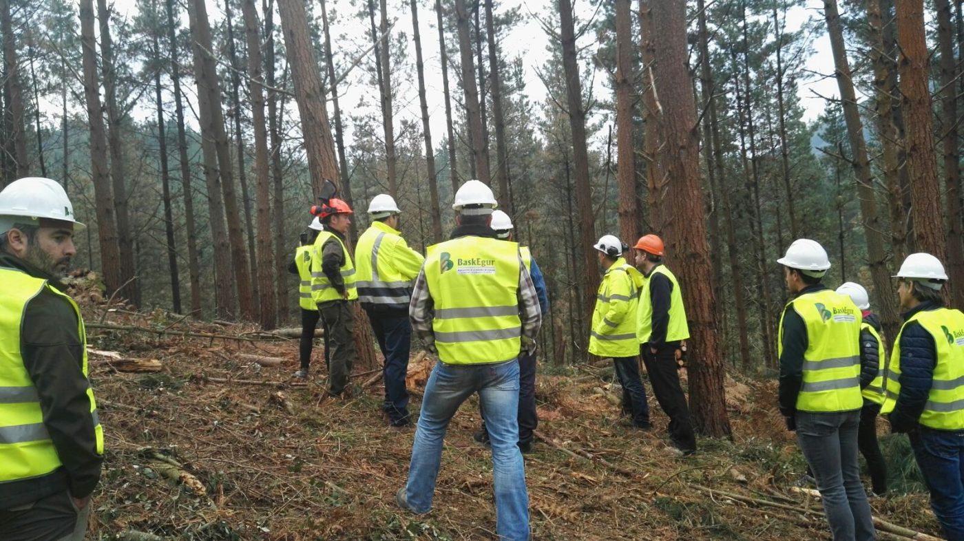 El compromiso con la gestión sostenible y la puesta en valor de la construcción en madera, ejes de la V SEMANA DE LA MADERA EN EUSKADI