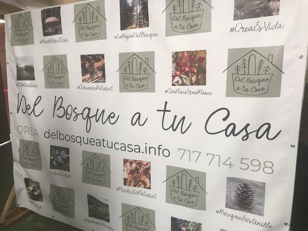 Nace la marca «Del Bosque a tu Casa»