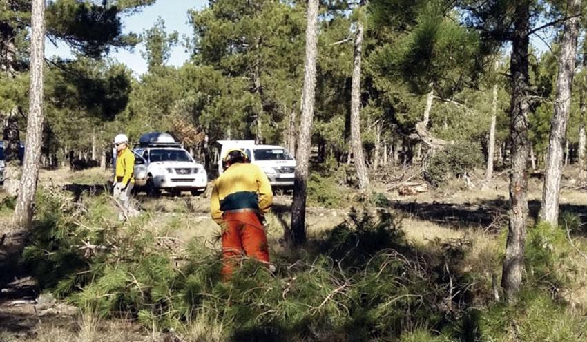 VEOLIA trabaja en la prevención de incendios forestales