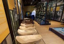 Asturias muestra la importancia de la madera en su Museo de Caso