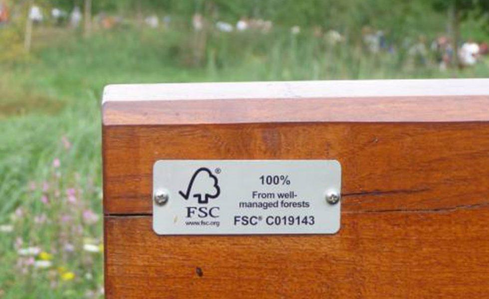 FSC lanza una campaña internacional para abrazar árboles sin necesidad de tocarlos
