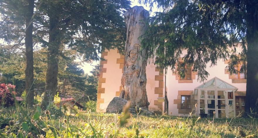 Castilla y León explota turísticamente su patrimonio forestal