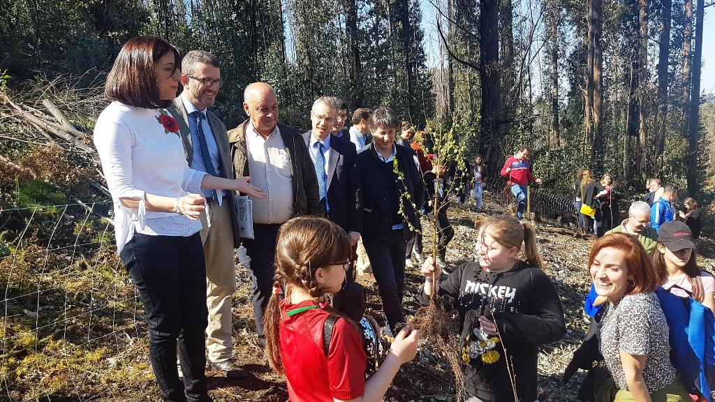 FSC promueve la reforestación de un monte en Galicia
