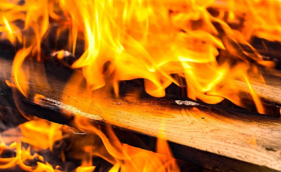 CEDRIA presenta su barniz intumescente que garantiza hasta 120 minutos de resistencia al fuego