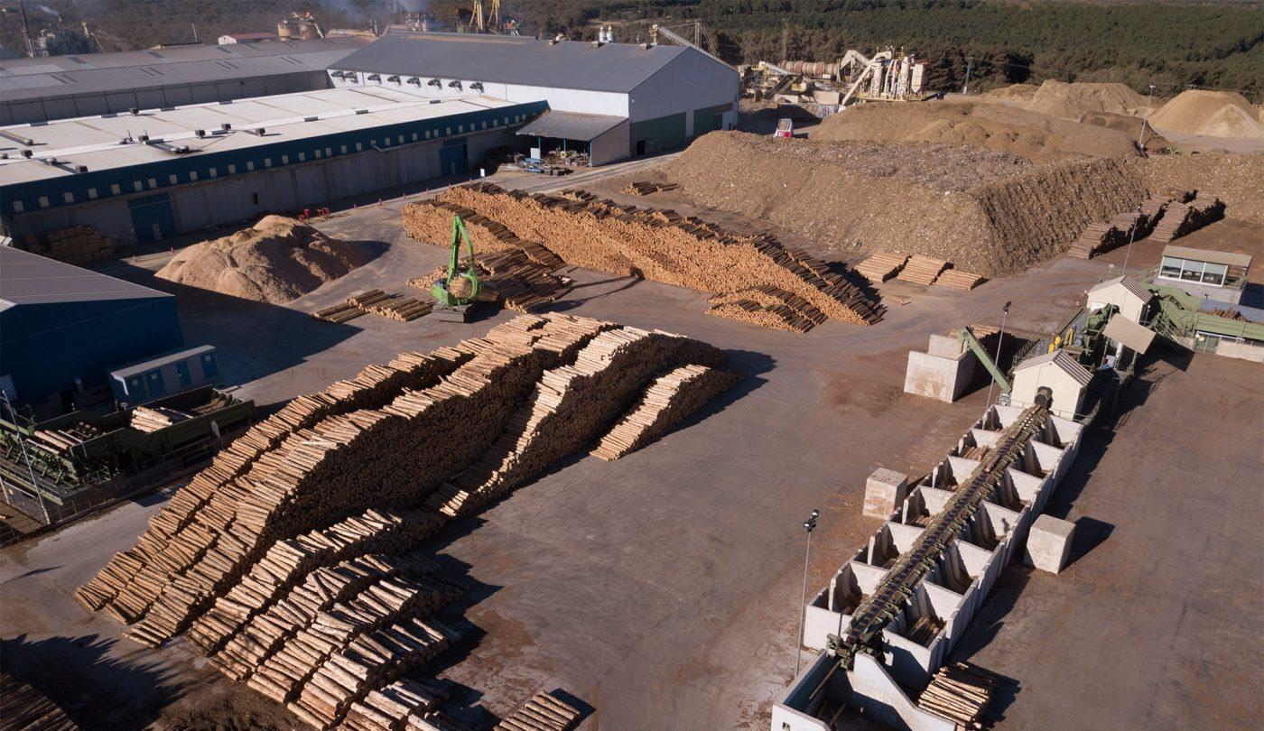 El aserradero de LOSAN en Soria celebra dos años de vida