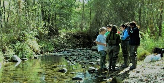 Curso treeNNOVA sobre naturaleza, emprendimiento y sostenibilidad