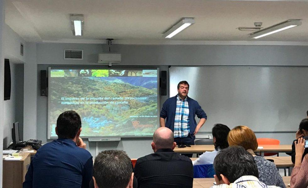 CESEFOR muestra sus trabajos sobre castaño, plagas y cambio climático