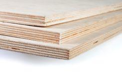 Decrece la producción de madera contrachapada de pino brasileño