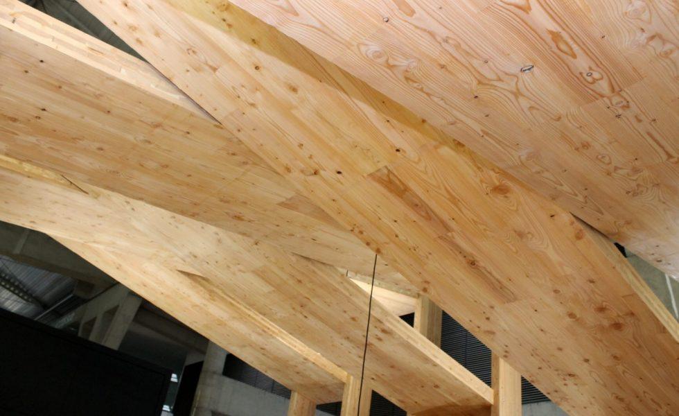 EGOIN fabrica panel contralaminado con alerce, ideal para exterior