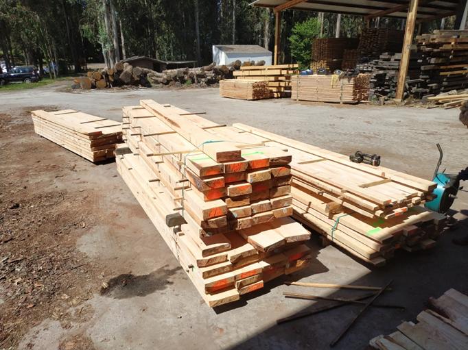 Mejoras en la gestión forestal para la calidad y la competitividad del pino marítimo