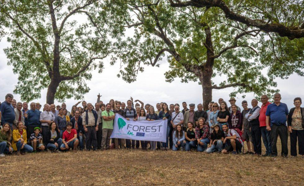 Más de 700 silvicultores capacitados en FOREST-IN