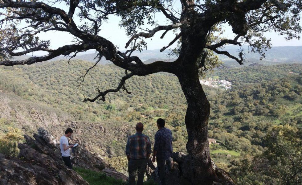 FSC organiza los primeros cursos para calcular los beneficios al ecosistema de los bosques españoles