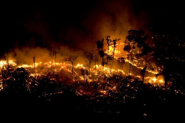 Los incendios ponen en jaque la Amazonía