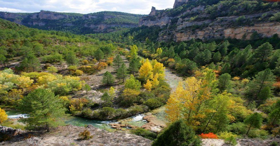 El Parque Natural del Alto Tajo absorbe y recicla cada año más de 500.000 toneladas de CO2
